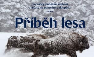PRIBEHLESA